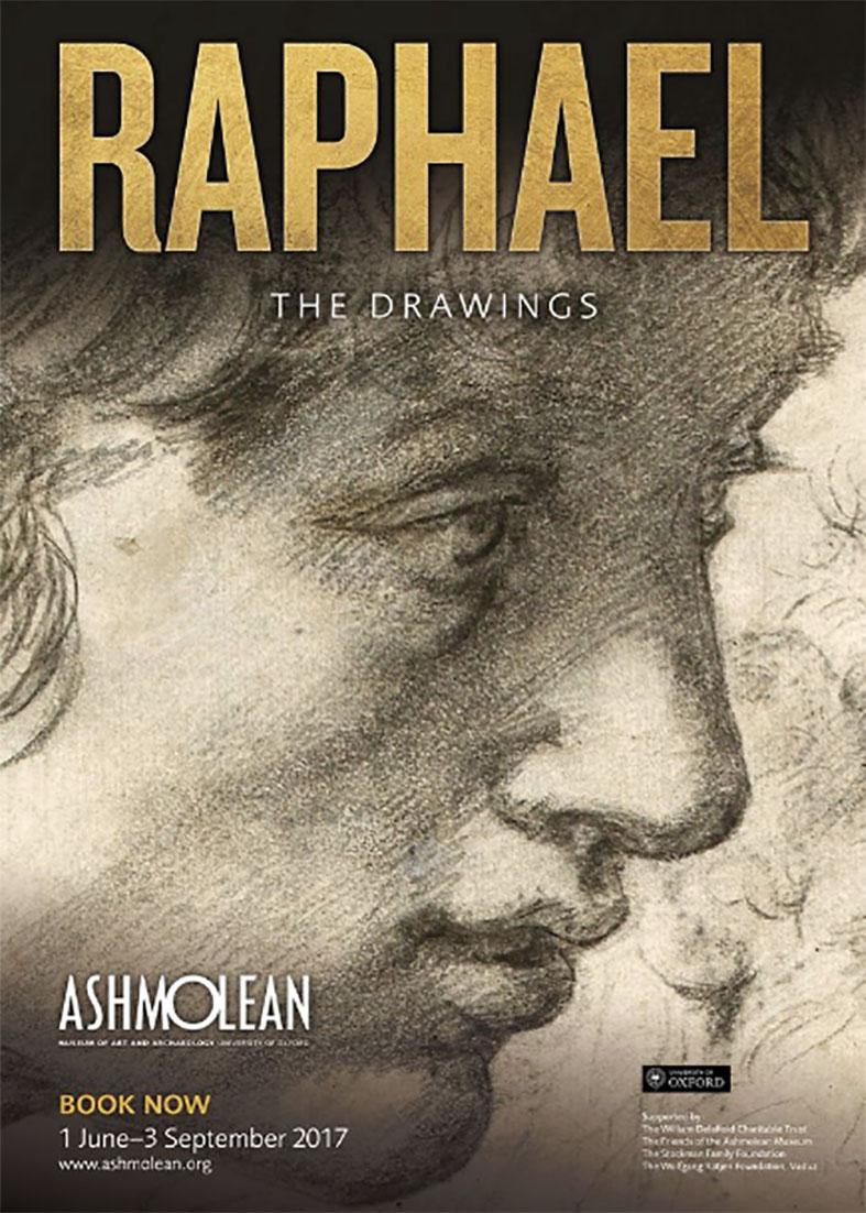 Raphael drawing ashmoleon
