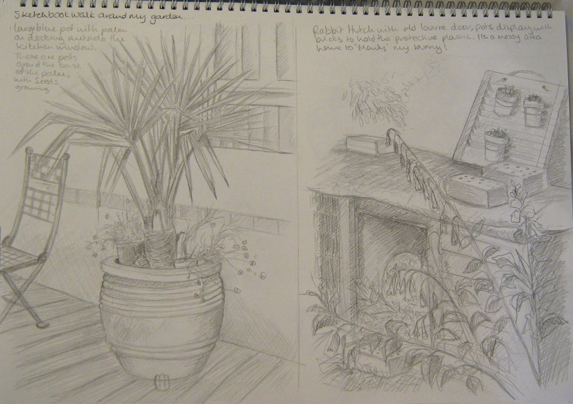 Exercise 2 ~ sketchbook walk ~ garden