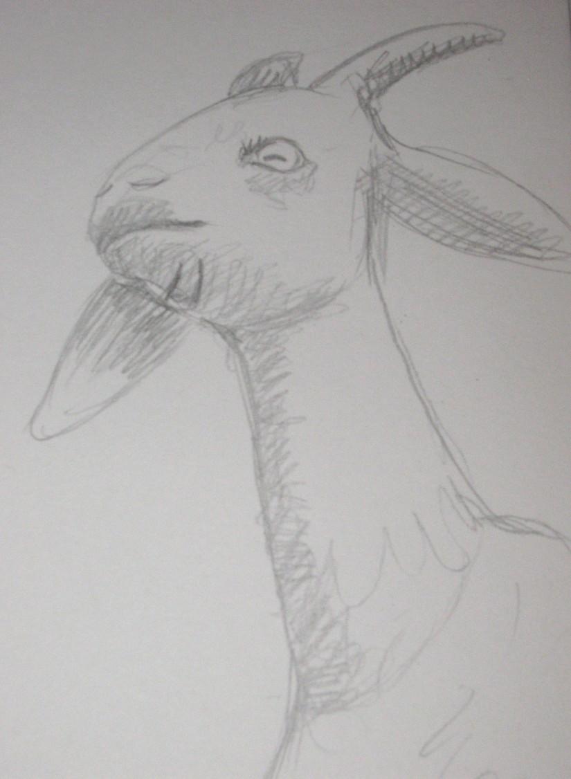 Spitalfield Goat head