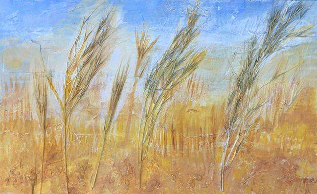 Grasses c