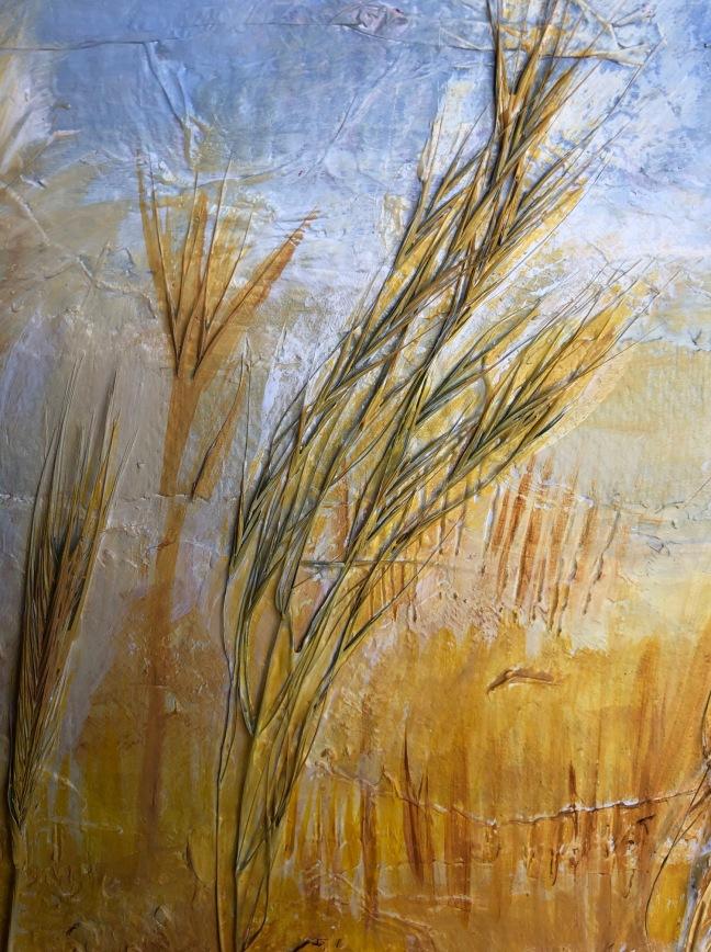 Grasses d