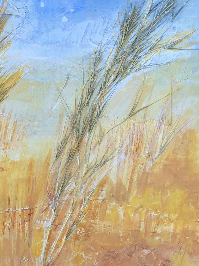 Grasses e