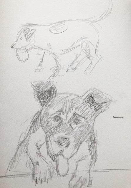 Sketch of sunny dog