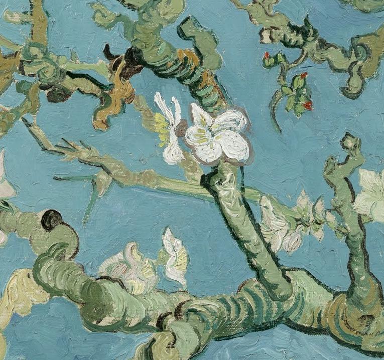 'Almond Blossom' Van Gogh 1890, detail